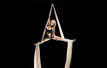 Aerial Dancer Live Entertainment